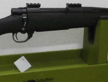 HOWA 1500 Houge 308win