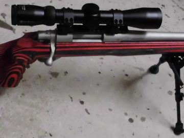 HOWA 1500 GRS 308win